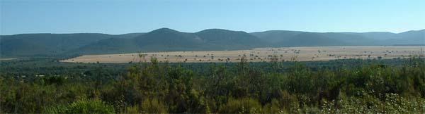 Ornitologia en Navas de Estena, Parque Nacional de Cabañeros, Ciudad Real, cerca de Toledo y Madrid