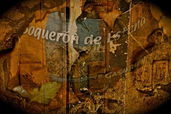 """Casa Rural """"El Boquerón de Estena"""""""